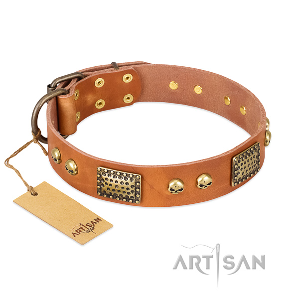 Easy to adjust natural leather dog collar for daily walking your doggie