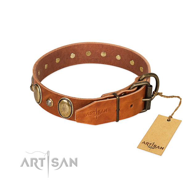 Daily use genuine leather dog collar