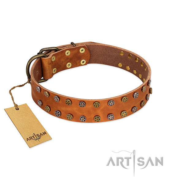 Everyday walking soft to touch full grain natural leather dog collar with decorations