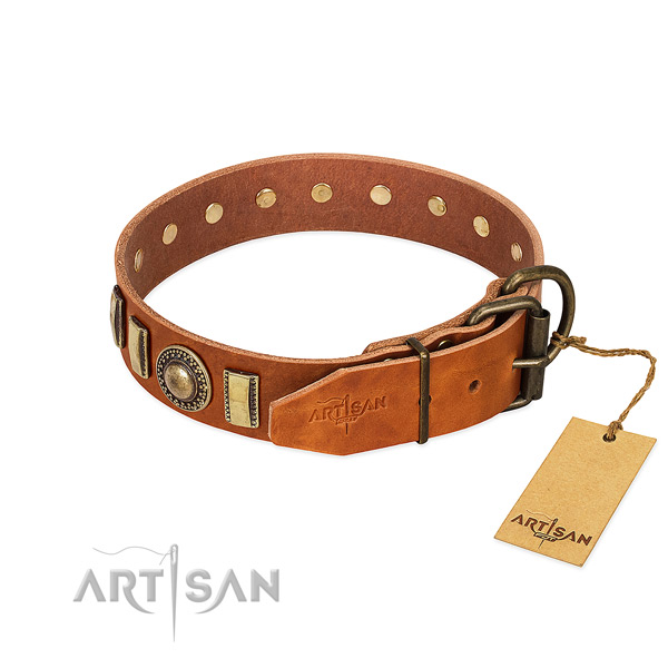 Stylish design genuine leather dog collar with reliable fittings