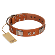 """Sweet Biscuit"" FDT Artisan Tan Leather Dog Collar with Stars and Plates"