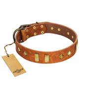 """Woofy Dawn"" FDT Artisan Tan Leather Riesenschnauzer Collar with Plates and Rhombs"