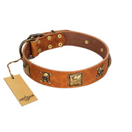 """Knights Templar"" FDT Artisan Tan Leather Riesenschnauzer Collar with Skulls and Crossbones Combined with Squares"