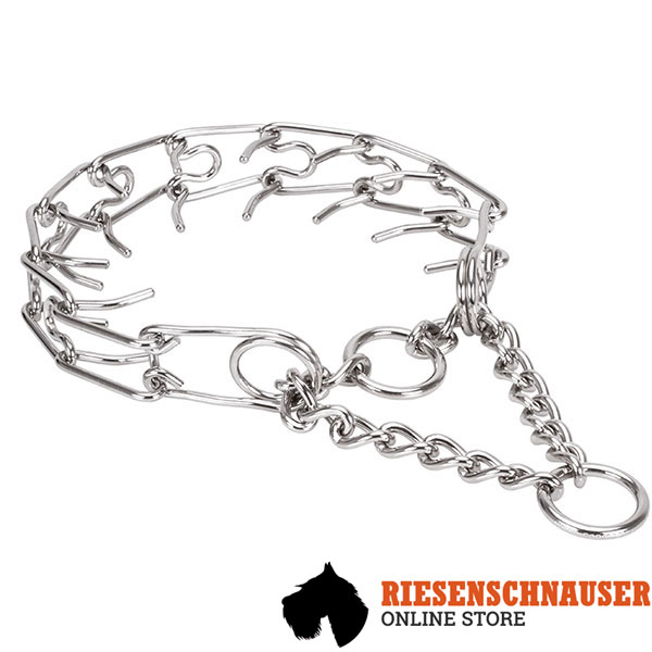 Stainless steel dog pinch collar with removable prongs for large breeds