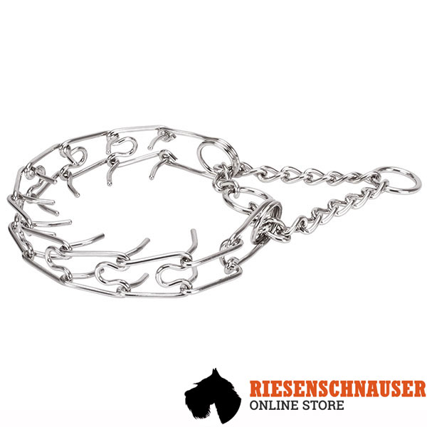 Dog prong collar of strong stainless steel for large dogs