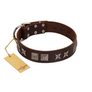"""Needle Stories"" Modern FDT Artisan Brown Leather Riesenschnauzer Collar with Square Engraved Plates and Four-Point Stars"