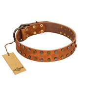 """Walk and Shine"" FDT Artisan Tan Leather Riesenschnauzer Collar with Antiqued Studs"