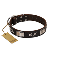 """Satin Beauts"" FDT Artisan Brown Leather Riesenschnauzer Collar with Stars and Plates"