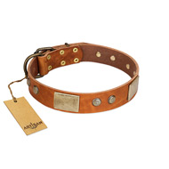 """Ancient Treasures"" FDT Artisan Tan Leather Riesenschnauzer Collar with Antiqued Plates and Studs"