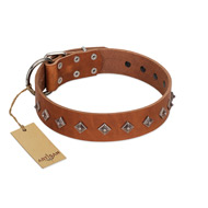 """Broadway"" Handmade FDT Artisan Tan Leather Riesenschnauzer Collar with Dotted Pyramids"