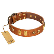 """Egyptian Script"" FDT Artisan Tan Leather Riesenschnauzer Collar with Plates and Small Studs"