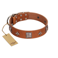 """Lucky Star"" FDT Artisan Tan Leather Riesenschnauzer Collar with Silver-Like Embellishments"