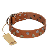 """Ancient Symbol"" Trendy FDT Artisan Tan Leather Riesenschnauzer Collar with Silver- and Gold-Like Studs"